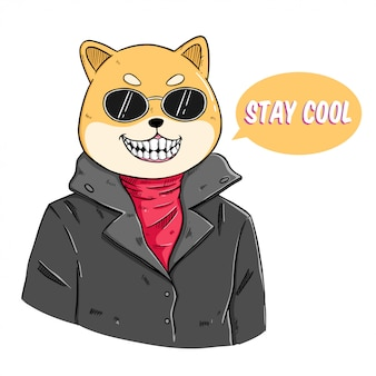 Fashion animal illustration of shiba inu dog dressed up in rider style with caption stay cool