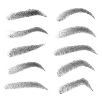 Fashion eyebrows of various shapes and types