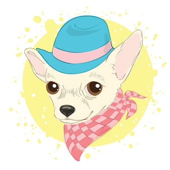 Fashion portrait of chihuahua dog wearing hat and cravat.