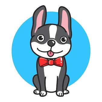 Fashionable cute french bulldog with a black and white color of wool in red bow tie.