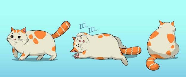 太った猫のポーズ