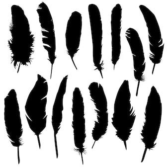 Feather bird animal clip art silhouette vector
