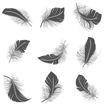 Feather black set