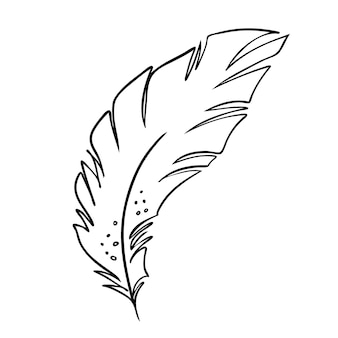 Перо птиц черно-белое перо силуэт для логотипа векторный набор
