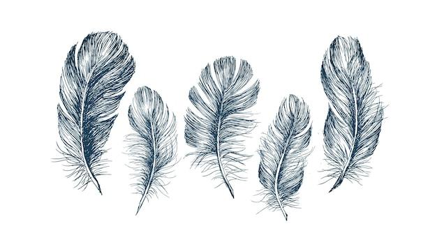 羽柄手描きスタイル