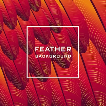 Feather pattern vector background