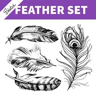 Набор перьев. ручной обращается эскиз иллюстраций