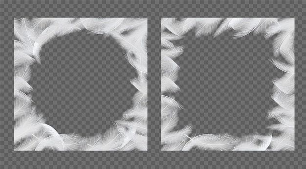Feathers frame set vector realistic illustration
