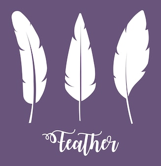 Feathers icons over purple background