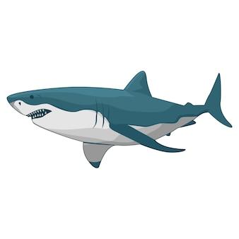 Fector illustration of shark