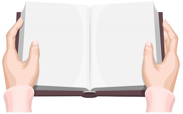 Female hands holding an open book
