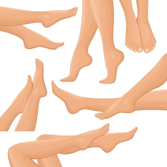 Set di gambe femminili
