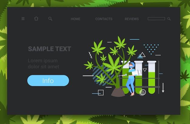 마리화나 식물 건강 관리 약국 의료 대마초 개념 수평 전체 길이 복사 공간을 검사하기 위해 주사기를 사용하는 여성 연구원