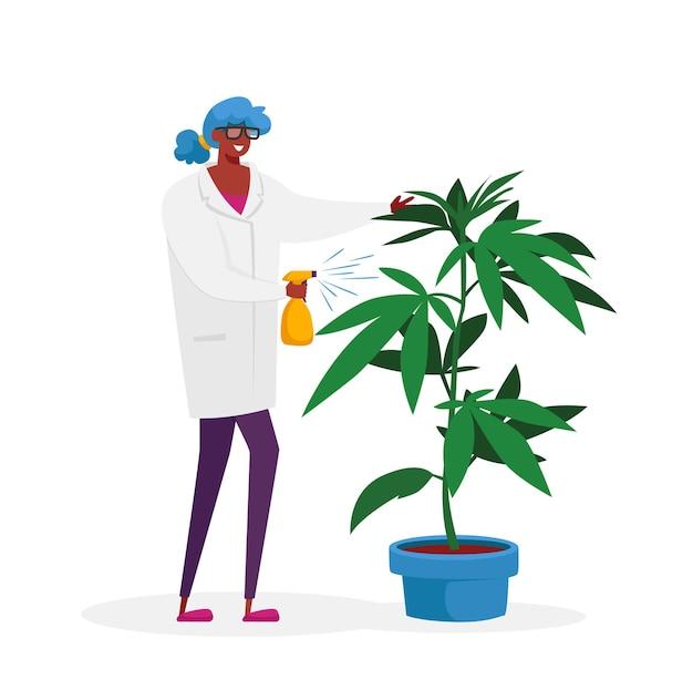 植木鉢で育つ大麻植物の女性科学者キャラクターケア