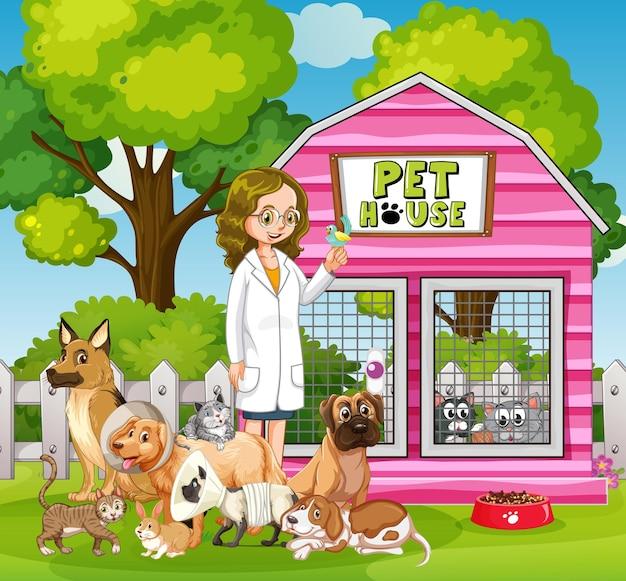 女性の獣医と多くのペット