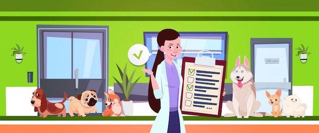 Female veterinarian over dogs sitting in waiting room in vet clinic office