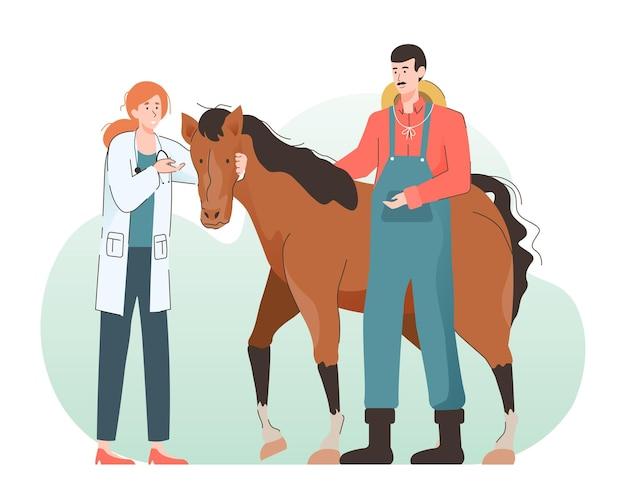 Женский ветеринар, осматривающий лошадь