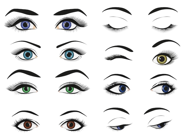 Female woman eyes and brows image collection set.