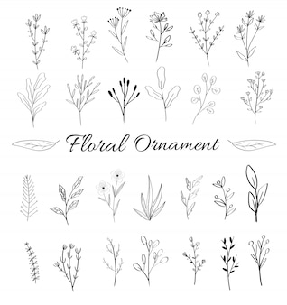 Feminine floral ornament collection for wedding card