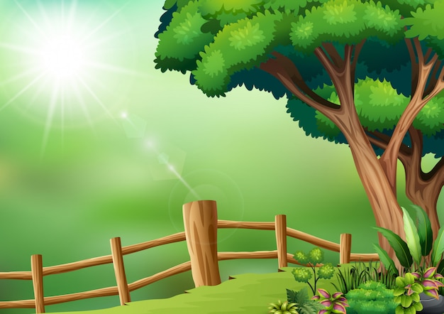 Fenced yard scene with tree