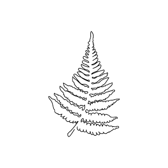 Fern branch continuous line drawing one line art of leaves herb jungle botanical
