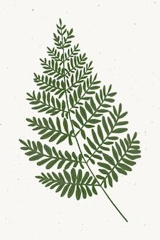 Fern branch design element