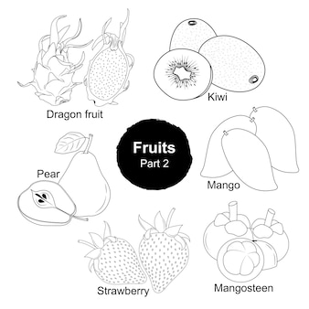 Fesh 과일 손으로 그린 컬렉션 2 부