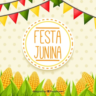 Festa junina background with cobs