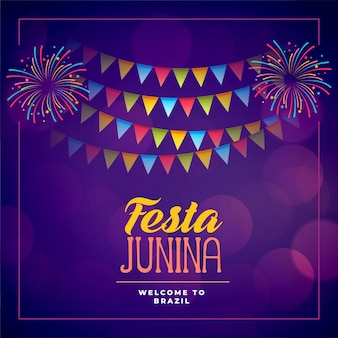 Festa junina event celebration holiday