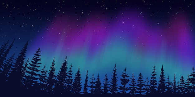 Festive christmas background, forest on the background of the polar lights