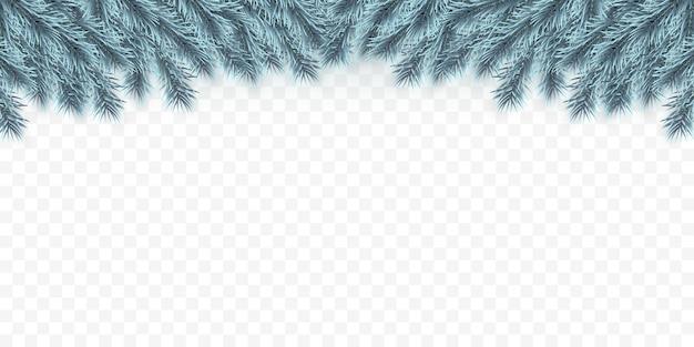 Праздничный фон рождество или новый год. голубые рождественские еловые ветки. фон праздника.