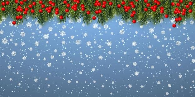お祝いのクリスマスや新年の背景。ヒイラギの果実とクリスマスの雪とクリスマスツリーの枝。休日の背景。ベクトルイラスト。