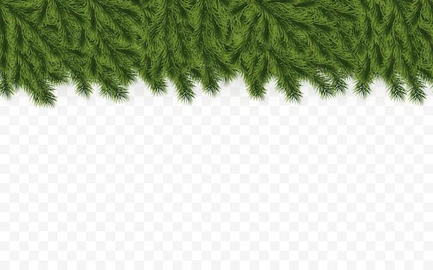 お祝いのクリスマスツリーの枝。休日のイラスト。