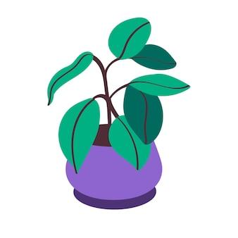 鍋にイチジクの花。装飾的な屋内植物。ベクトルイラスト