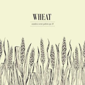 小麦畑シームレスパターンベクトル。ヴィンテージ手描きイラスト。パン包装、ビールラベルに使用できます
