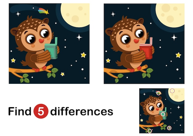 Find 5 differences education game for children owl in the night vector illustration