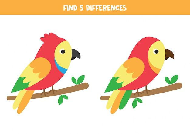 Find 5 differences. two cute cartoon parrots.