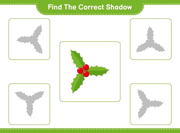 Holly berries의 정확한 그림자 찾기 및 일치