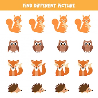 Find animal in reach row which is different from others.