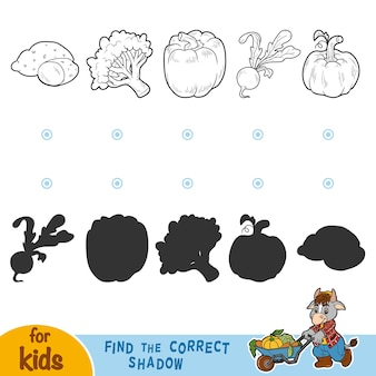 Find the correct shadow, education game for children. black and white vegetables