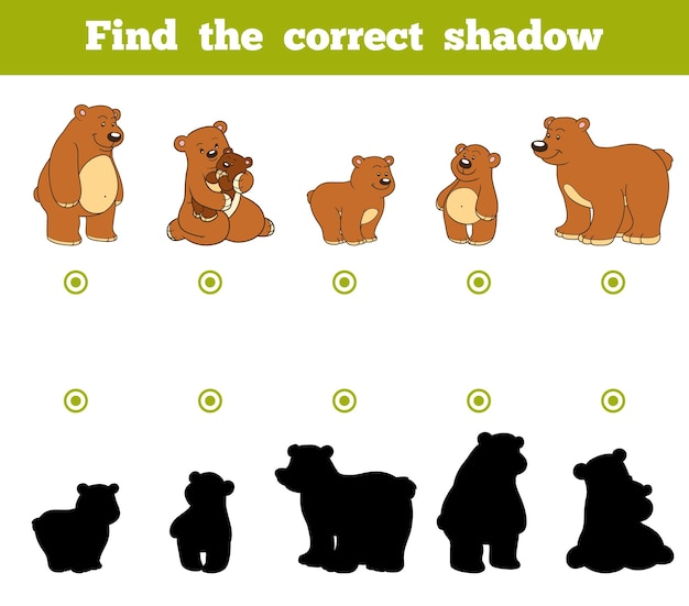 Find the correct shadow, education game for children. set of cartoon bears