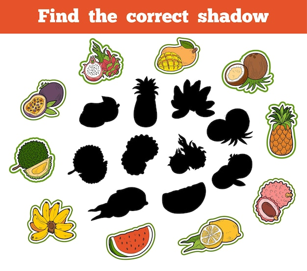 Find the correct shadow, education game for children. thai fruits
