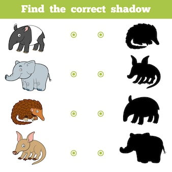 Find the correct shadow, education game for children. vector set of animals