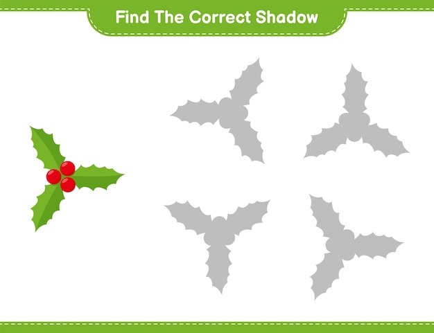 Find the correct shadow. find and match the correct shadow of holly berries. educational children game