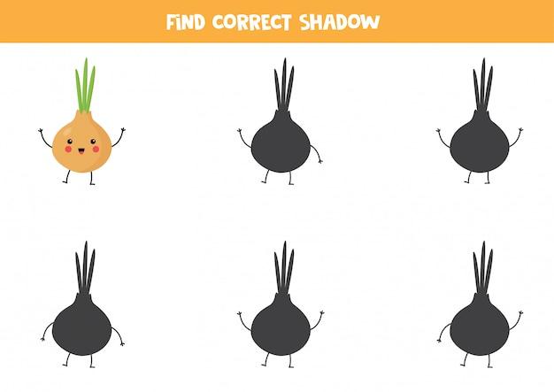 Find the correct shadow of kawaii onion.