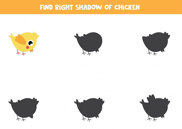 かわいい黄色の赤ちゃん鶏の正しい影を見つけます。