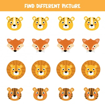 Find different picture in each row. cute cartoon animal faces.