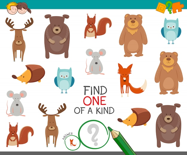 Find one of a kind educational game for kids with animals