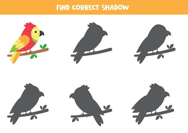 Find the right shadow of cartoon red parrot.
