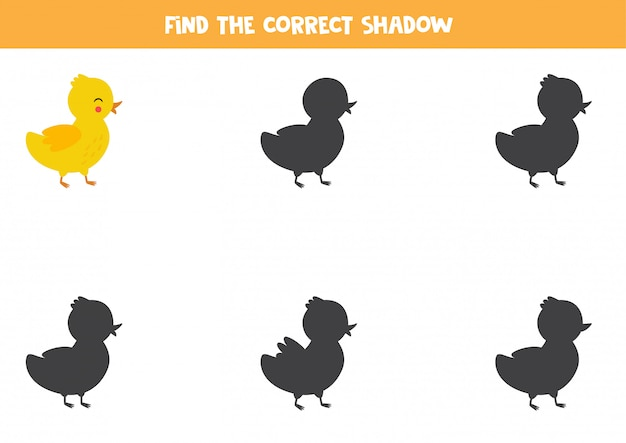 Find the right shadow of cute cartoon duckling.